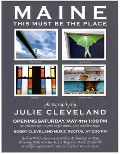 poster-Julie-Cleveland-exhibit-at-Reversing-Falls