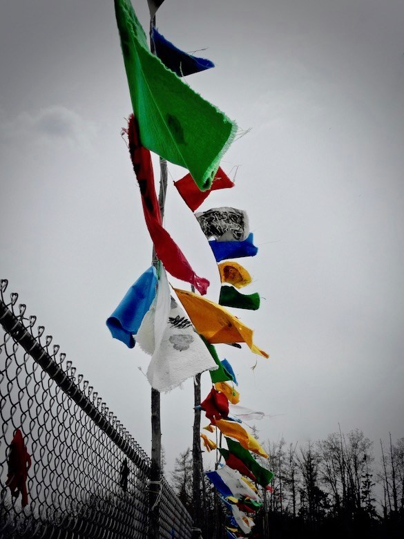 Brooksville-Elementary-School-earth-day-flags